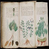 Có gì bên trong cuốn sách bí ẩn nhất lịch sử nhân loại? Đáp án là đây!