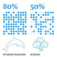 Con người chỉ chiếm 0,01% sự sống trên Trái đất nhưng lại hủy diệt 83% các loài khác