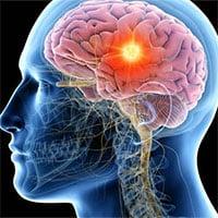 Con người có khả năng tái tạo các bộ phận cơ thể