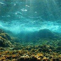 Con người đã thay đổi âm thanh đại dương