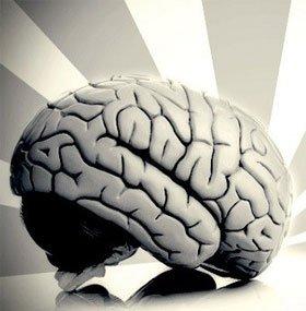 Con người hoạt động thế nào nếu chỉ còn nửa bộ não?