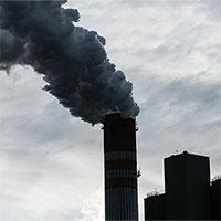 Con người sẽ ngày càng ngu dốt nếu sống lâu trong không khí ô nhiễm?