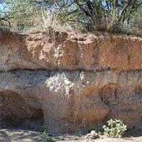 Cú tấn công tàn khốc của sao chổi 13.000 năm trước làm thay đổi nền văn minh nhân loại?