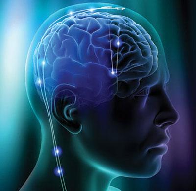 Da thuộc có ảnh hưởng đến hoạt động của não bộ?