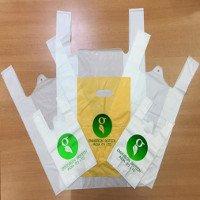 Đại Học Bách Khoa Hà Nội nghiên cứu thành công túi nilon tự hủy làm từ bột sắn