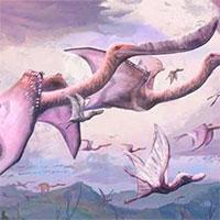 Đáng sợ quái vật vừa nở ra đã biết bay và thành