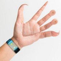 Đây là bàn tay con người nếu chúng được tiến hóa dành cho smartphone