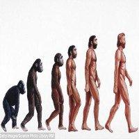 Đây là bằng chứng cho thấy sự tiến hóa của loài người vẫn còn rất