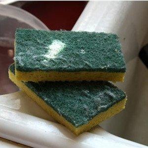 Đây là cách duy nhất loại hết vi khuẩn ở giẻ rửa bát