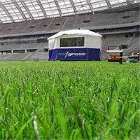 Đây là lí do chung kết World Cup 2018 sẽ sử dụng sân cỏ