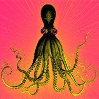 Đây là lý do vì sao bạch tuộc được công nhận là sinh vật quái dị nhất hành tinh