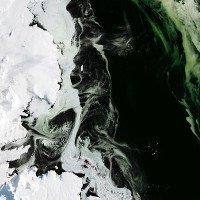 Điều bí ẩn nào khiến cho lớp băng ở Nam Cực có màu xanh?