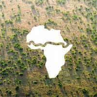 Điều chưa từng có ở châu Phi: Bức