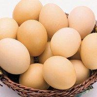 Điều ít người biết về số trứng gà chúng ta vẫn ăn hàng ngày