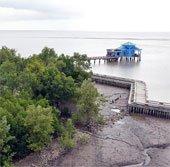 Đồng bằng sông Cửu Long nguy cơ ngập chìm dưới biển