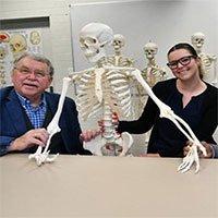 Động mạch ở cẳng tay hé lộ con người vẫn tiến hóa