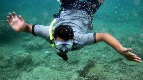Đông Nam Á: san hô chết hàng loạt
