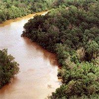Dòng sông đảo ngược dòng suốt nửa ngày do bão