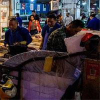 Động vật hoang dã - nguồn cơn dịch viêm phổi Vũ Hán