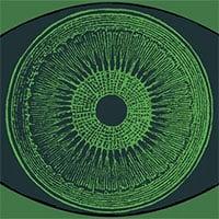 Đột phá: Nhờ cấy gene tảo vào mắt, một người khiếm thị lấy lại được một phần nhỏ thị lực