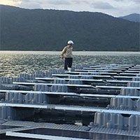 Dự án điện mặt trời Đa Mi sử dụng phao nổi