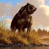 Gấu nâu khổng lồ nhất thế giới cao 4,5m nặng 1,5 tấn: