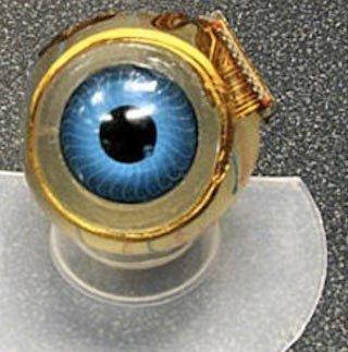 Ghép thành công vi mạch mắt điện tử