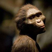 Giả thuyết mới cho câu hỏi: Tại sao loài người tồn tại?