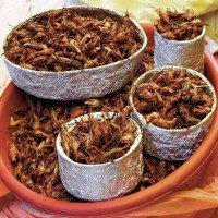 Giá trị dinh dưỡng trong côn trùng sánh ngang thịt bò
