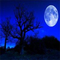 """Giải mã lời nguyền """"trăng xanh tháng Bảy"""" gây thảm cảnh?"""