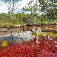 Giải mã những hiện tượng thiên nhiên độc lạ xảy ra trong mùa thu