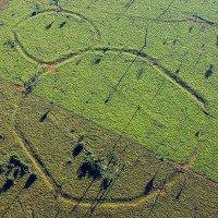 Giải mã những hình thù bí ẩn tại vùng rừng Amazon