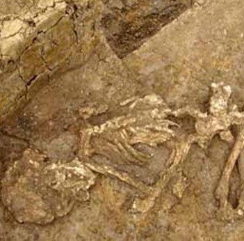 Giải mã thủ thuật ướp xác từ thời đồ đồng