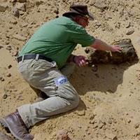 Gió lớn để lộ xác ướp 2000 năm tuổi dưới cát khiến các nhà khảo cổ bất ngờ