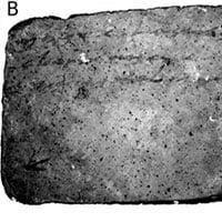 Giới khoa học mất 50 năm để giải mã nội dung bức thư 2600 năm tuổi chuẩn