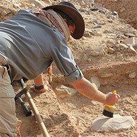 Giống người cổ tuyệt chủng vì… lười biếng