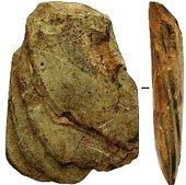 Hà Tĩnh: Phát hiện nhiều công cụ bằng đá hơn 4000 năm