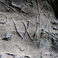 Hang động lâu đời nhất nước Anh được bao phủ với các dấu hiệu của