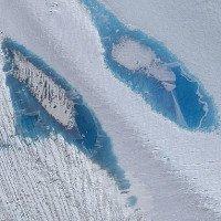Hàng ngàn vệt xanh này đang xuất hiện tại Nam Cực, và đó là tin cực kỳ xấu