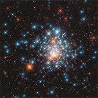 Hàng nghìn ngôi sao tập trung giống đànong