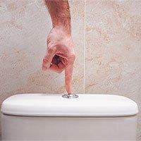 Hành động bạn nhất định phải làm trước khi giật nước bồn cầu