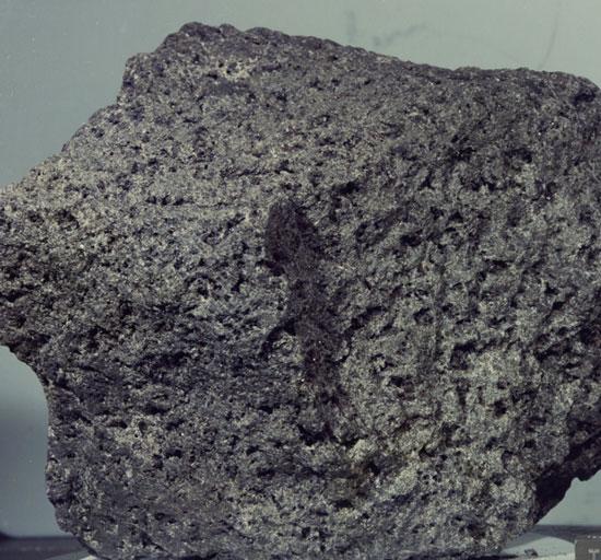 Hành trình truy tìm đá mặt trăng