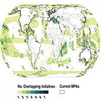 Hầu hết các khu vực biển quan trọng không được bảo tồn