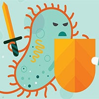 Hệ miễn dịch: Cơ chế kỳ diệu của cơ thể - đội quân thầm lặng giúp chúng ta sống sót