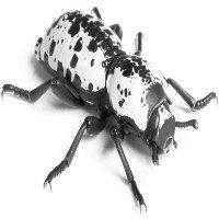 Hệ thống giảm xóc siêu bền lấy ý tưởng từ bọ giáp sắt, xe cán mìn vẫn không hỏng