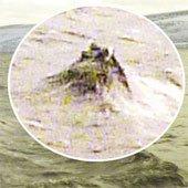 Hình ảnh giống đầu quái vật hồ Loch Ness