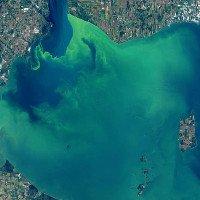 Hồ nước ở Mỹ chuyển màu tuyệt đẹp,nhưng đó lại là tin cực kỳ không tốt
