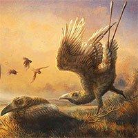 Hóa thạch tiết lộ loài