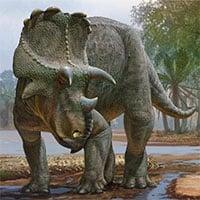 Hóa thạch tiết lộ loài khủng long có sừng cổ xưa nhất