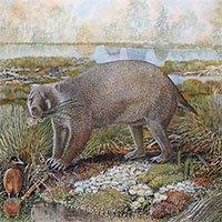 Hóa thạch tiết lộ loài thú túi khổng lồ